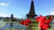 Bali og Indonesien